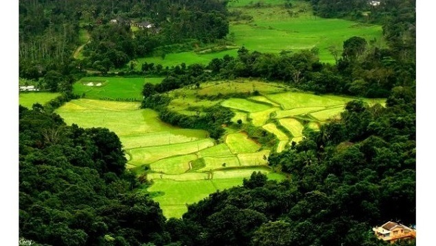 Here's Why Coorg (in Karnataka) is Called the Scotland of India